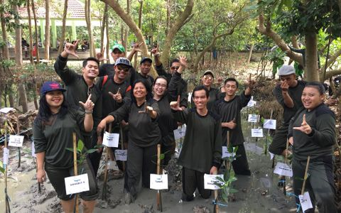 Earth day: Mangrove planting