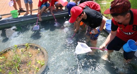 Catching fish is one of many activities which could be enjoyed by children when staying in the best hotel with exclusive mountain view in Sentul area
